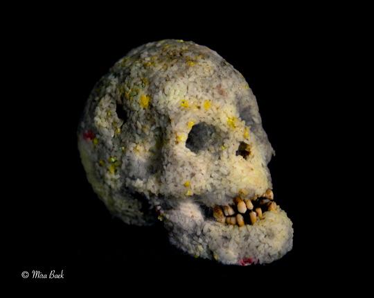 [Chronique] Mira Baek ou la mort vivante, par Tristan Felix