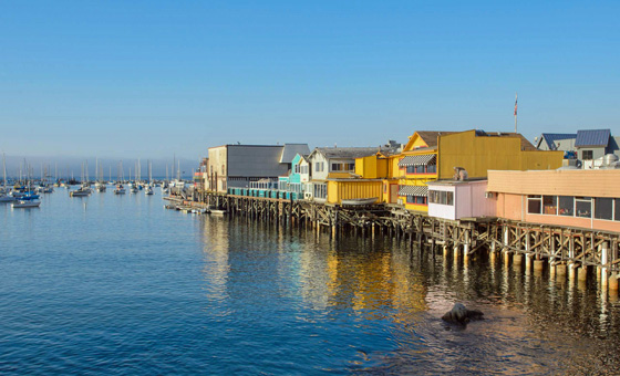 [Chronique] Guillaume Decourt, À 80 km de Monterey, par Dan Ornik (mini-dossier 1/2)