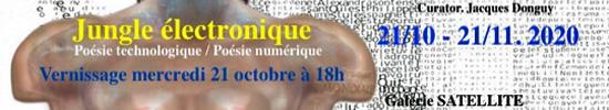 [NEWS] Jacques Donguy, Jungle électronique (exposition)