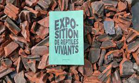 [Chronique] Guillaume Marie, Exposition de reptiles vivants, par CHRISTOPHE STOLOWICKI
